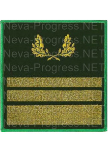 Нарукавный знак для сотрудников лесного надзора с эмблемой 2 узких галуна и 1 средний. Цена за пару.