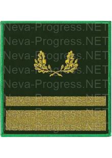Нарукавный знак для сотрудников лесного надзора с эмблемой 1 узкий галун и 1 средний. Цена за пару.