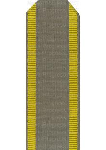 Погоны для курсантов защитного цвета с двумя продольными полосами желтого цвета. цена за пару