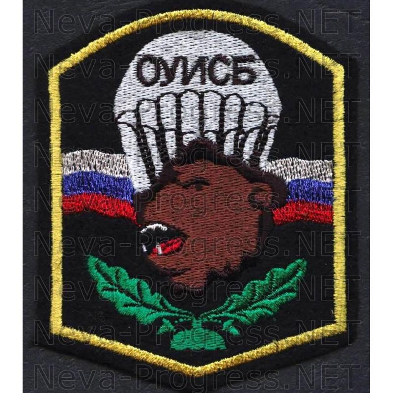 Шеврон 113 отдельный учебный инженерно-саперный батальон воздушно-десантных войск (ОУИСБ ВДВ) ВС МО РФ (Саратов)