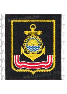 Шеврон Тихоокеанского флота (черный фон, желтый кант)