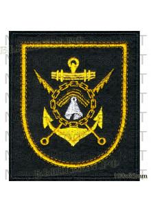 Шеврон 14 бригада больших противолодочных кораблей Северного Флота РФ г. Североморск (черный фон, желтый кант)